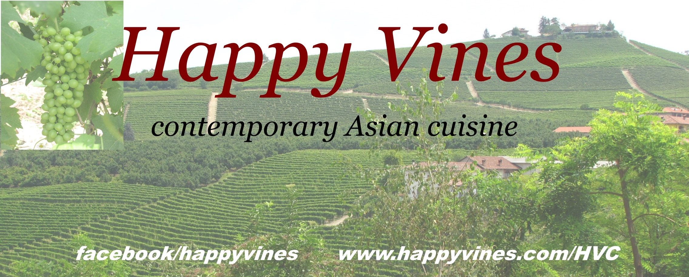 Happy Vines logo