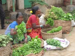 Hyderabad vegetable market